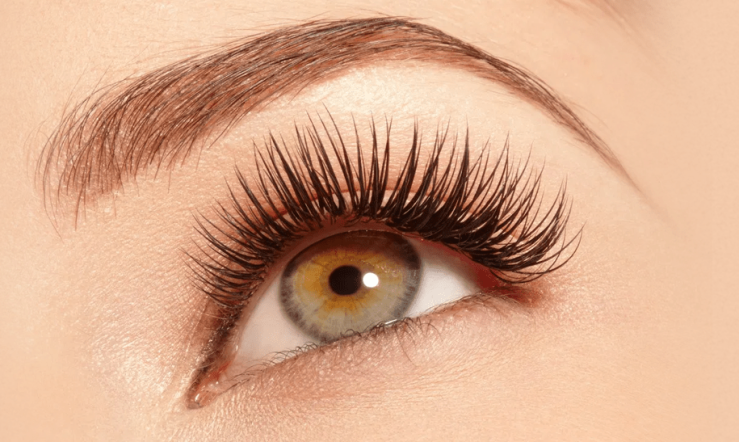 how-long-do-my-eyelashes-take-to-grow-back-e1569352115703.png